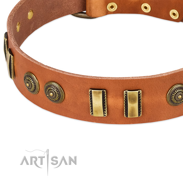 Durable buckle on full grain genuine leather dog collar for your canine