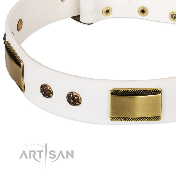 Strong embellishments on genuine leather dog collar for your canine