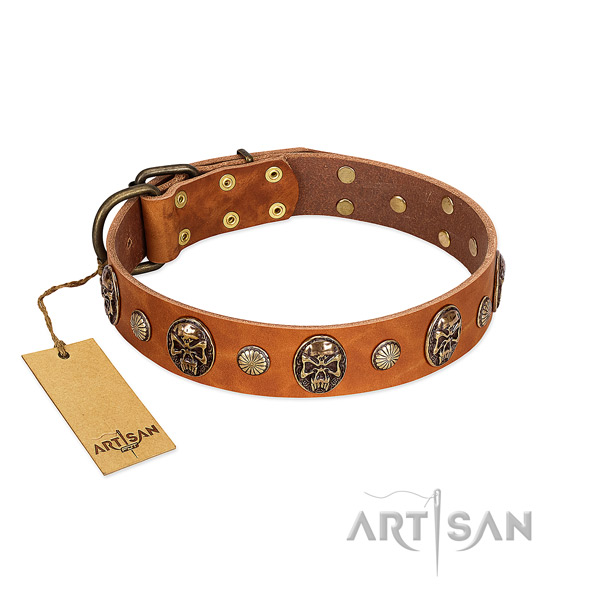 Stylish full grain natural leather dog collar for walking