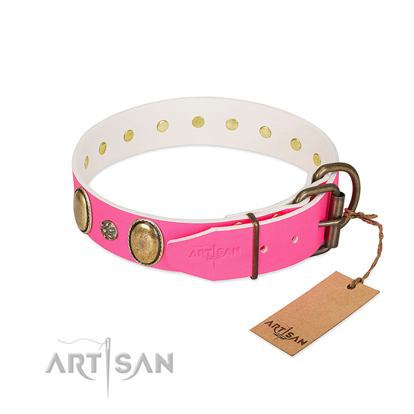 Gentle to touch full grain natural leather dog collar with embellishments