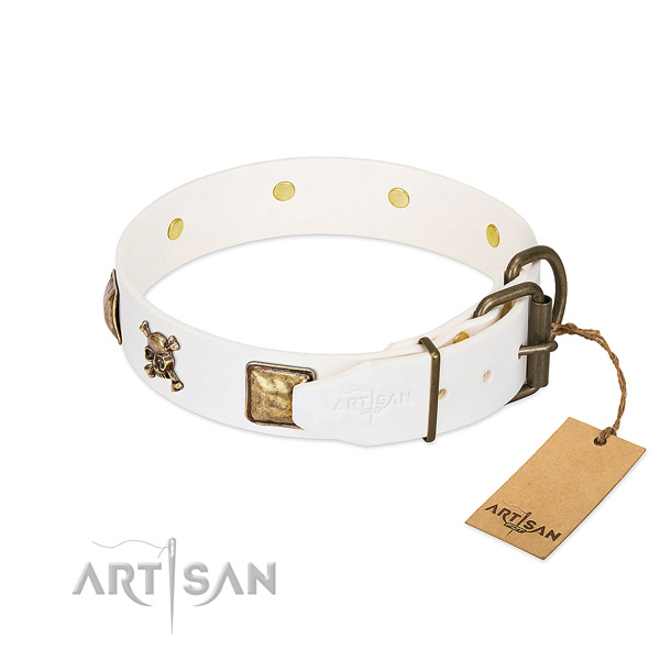 Stylish natural leather dog collar with reliable embellishments