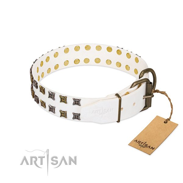 Leather collar with top notch decorations for your dog