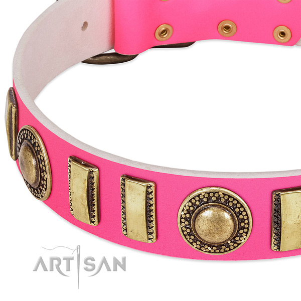 High quality natural leather dog collar for your stylish dog