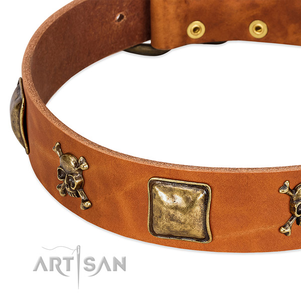 Remarkable full grain genuine leather dog collar with durable studs