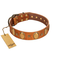 """Glossy Autumn"" Designer Handmade FDT Artisan Tan Leather Belgian Malinois Collar with Ovals and Studs"