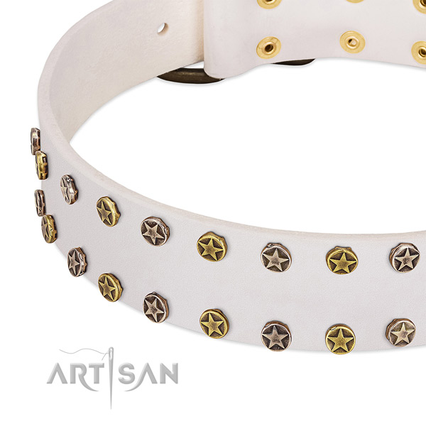Unusual studs on full grain natural leather collar for your doggie