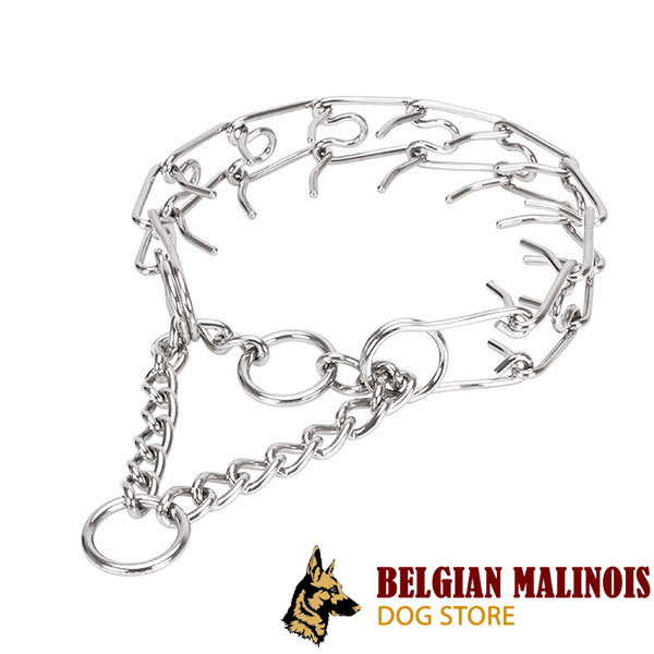 Stainless steel dog prong collar for large pets