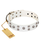 """Rock the Sky"" Durable FDT Artisan White Leather Belgian Malinois Collar with Chrome-plated Decorations"
