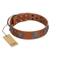 """Blue Sands"" FDT Artisan Tan Leather Belgian Malinois Collar with Silver-like Studs and Round Conchos with Stones"