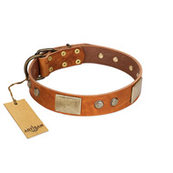 """Ancient Treasures"" FDT Artisan Tan Leather Belgian Malinois Collar with Antiqued Plates and Studs"