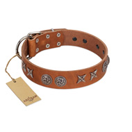 """Brave Spirit"" Handmade FDT Artisan Designer Tan Leather Belgian Malinois Collar with Shields"