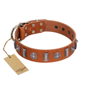 """Luxurious Necklace"" FDT Artisan Tan Leather Belgian Malinois Collar with Silver-Like Adornments"