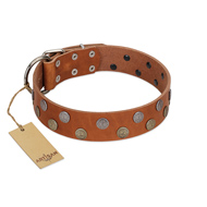 """Ancient Symbol"" Trendy FDT Artisan Tan Leather Belgian Malinois Collar with Silver- and Gold-Like Studs"