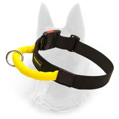 Multi-purpose Belgian Malinois Nylon Quick Release Buckle  Collar