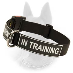 Belgian Malinois Various Patches Nylon Cool Collar