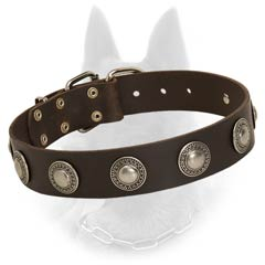 Leather Belgian Malinois Dog Collar With Medallions