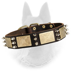 Extravagant Leather Belgian Malinois Dog Collar With  Brass Plates And 3 Nickel Spikes Between Them