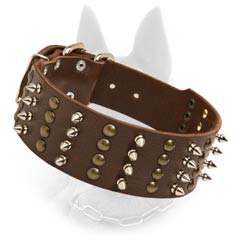 Stylish Wide Leather Belgian Malinois Dog Collar