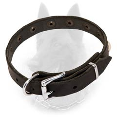 Belgian Malinois Buckled Leather Dog Collar 3/4 inch  Wide with Riveted Nickel Decoration