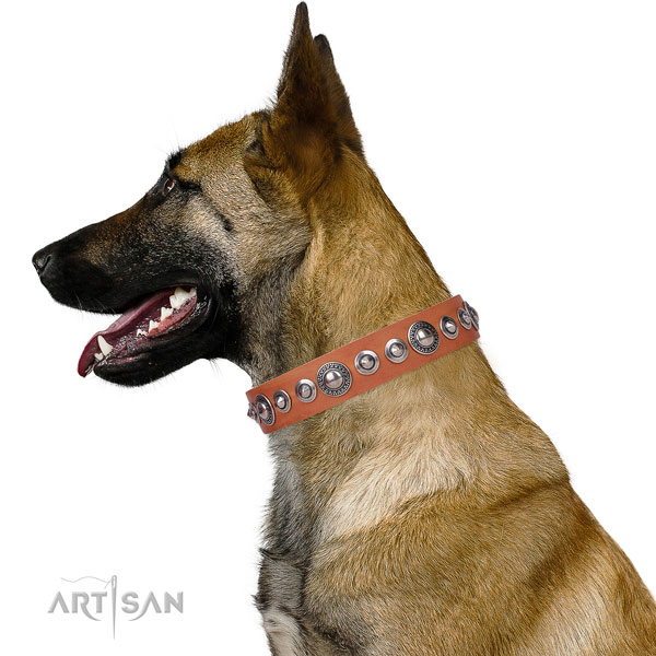 Stylish adorned leather dog collar for easy wearing