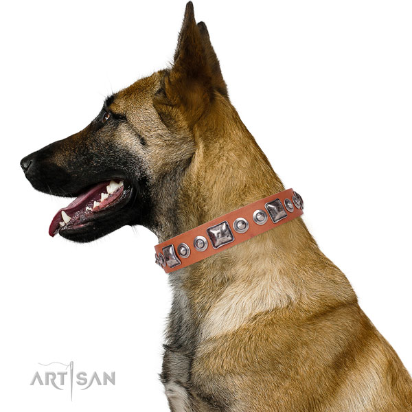 Trendy adorned leather dog collar for fancy walking