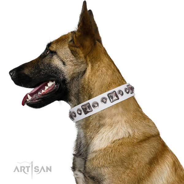 Unique adorned natural leather dog collar for stylish walking