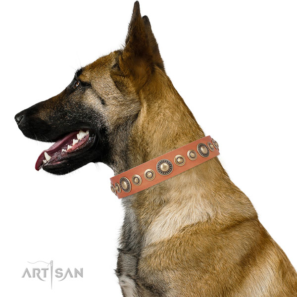 Reliable buckle and D-ring on leather dog collar for stylish walks