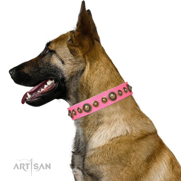 Corrosion proof buckle and D-ring on natural leather dog collar for stylish walks