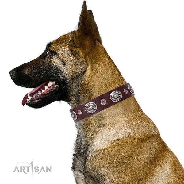Rust-proof buckle and D-ring on leather dog collar for everyday walking