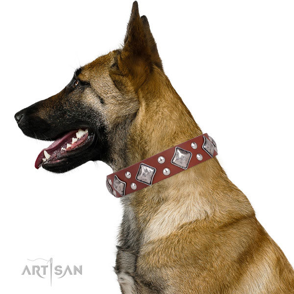 Stylish walking decorated dog collar made of best quality leather