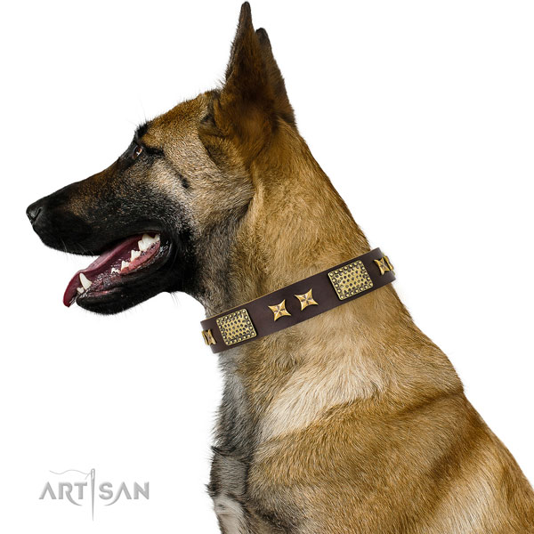 Handy use dog collar with designer studs