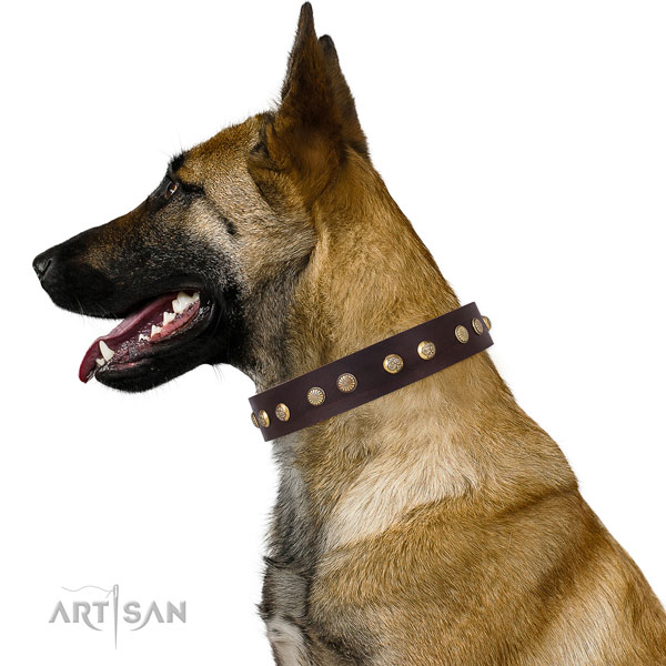 Designer embellishments on comfy wearing full grain genuine leather dog collar