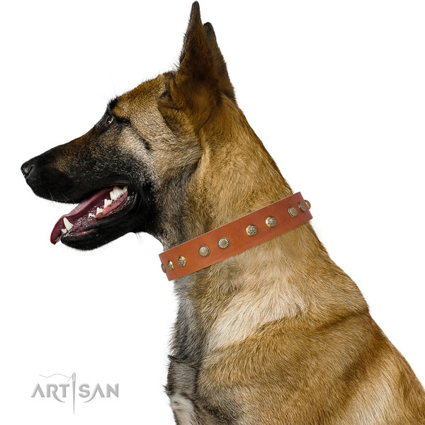 Exquisite embellishments on everyday walking natural genuine leather dog collar