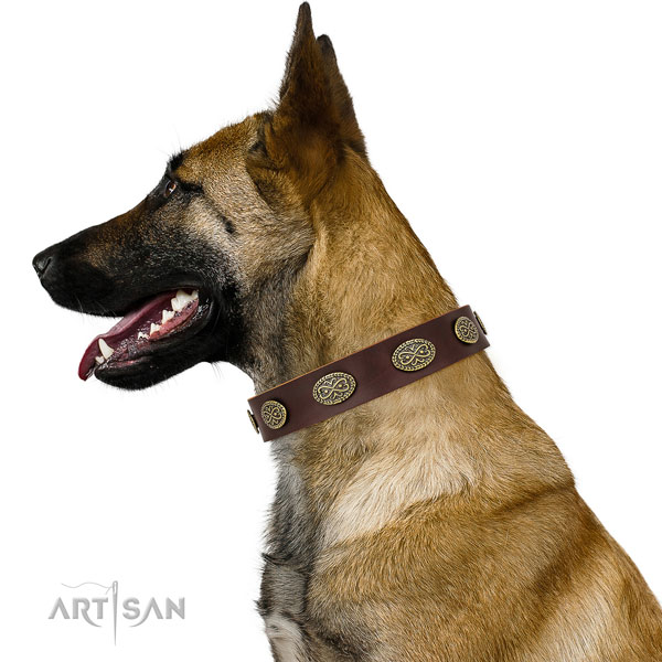 Unusual adornments on walking genuine leather dog collar