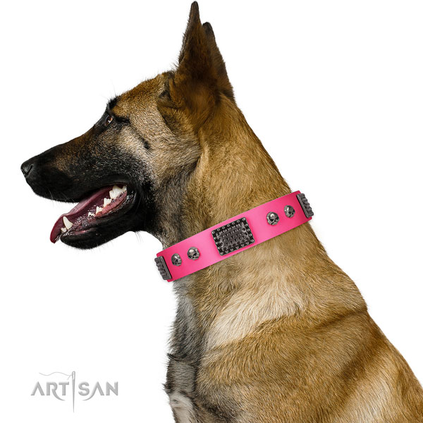 Impressive natural leather collar for your lovely canine