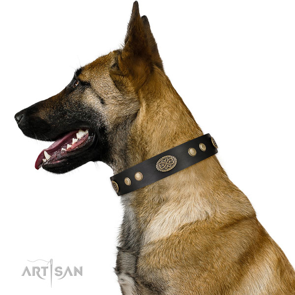 Corrosion resistant fittings on natural leather dog collar
