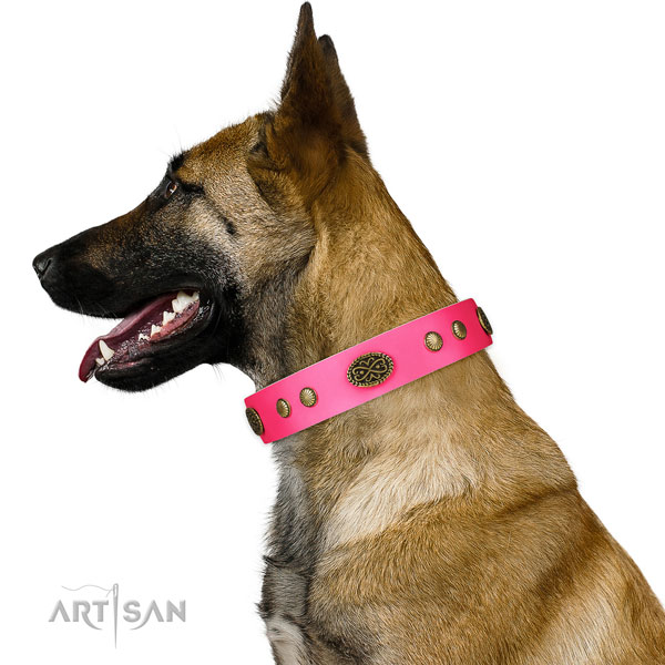 Durable traditional buckle on natural leather dog collar for easy wearing