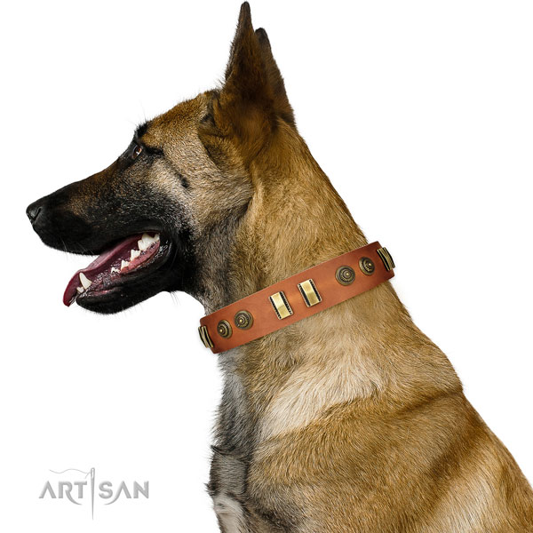 Corrosion proof fittings on full grain leather dog collar for handy use