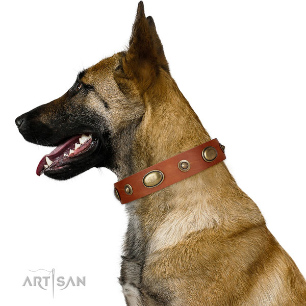 Handy use dog collar of leather with trendy embellishments