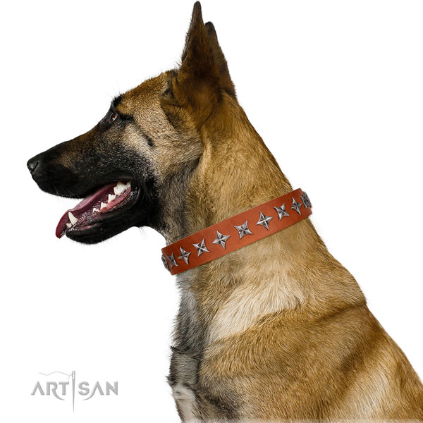 Top notch leather dog collar with stylish design decorations