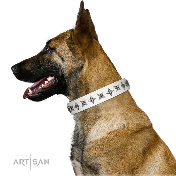 Top notch natural leather dog collar with exquisite adornments