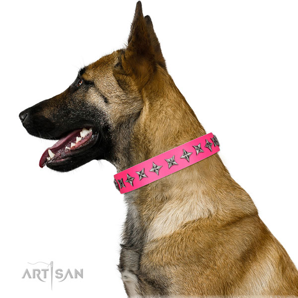 High quality full grain natural leather dog collar with trendy adornments