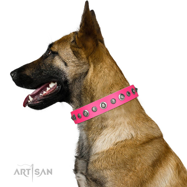 Full grain genuine leather collar with rust resistant traditional buckle for your lovely canine