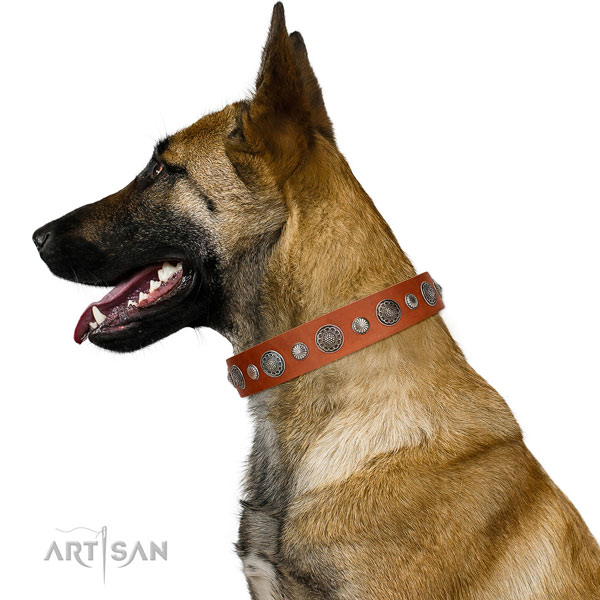 Best quality full grain genuine leather dog collar with rust resistant traditional buckle