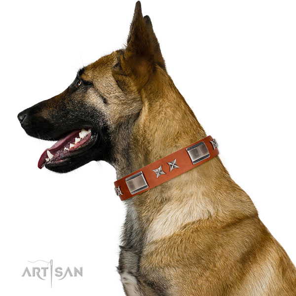 Fancy walking flexible genuine leather dog collar with decorations