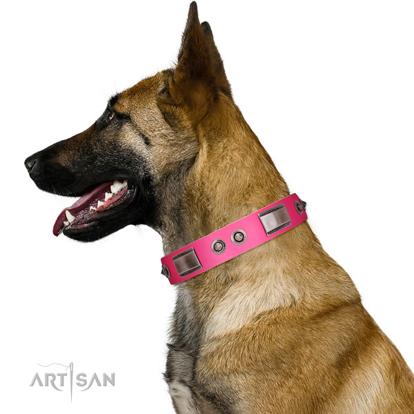 Exceptional full grain leather dog collar with adornments