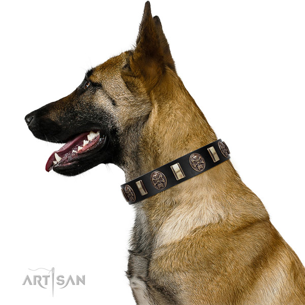 Full grain leather collar with adornments for your impressive pet