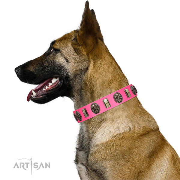 Durable buckle on full grain leather dog collar for basic training