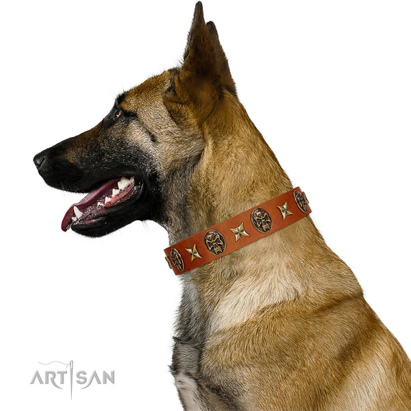 Awesome natural leather dog collar with studs