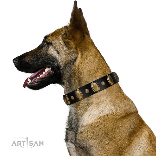 Leather dog collar of flexible material with stylish design decorations